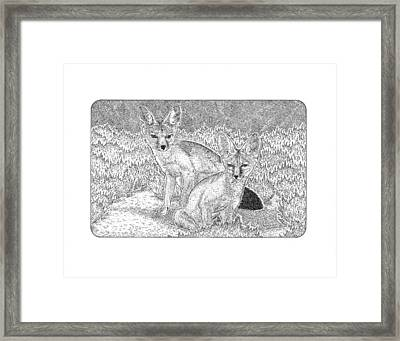 Vic's Kit Foxes Framed Print by Gary Funk