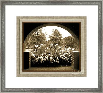 View To The Garden Framed Print by Darla Wood