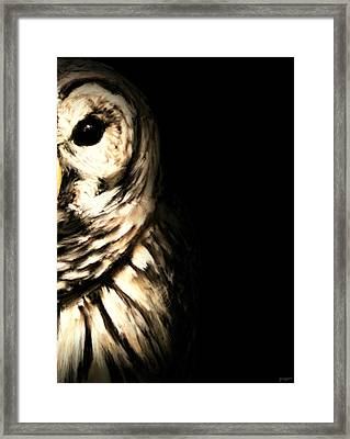 Vigilant In Darkness Framed Print by Lourry Legarde
