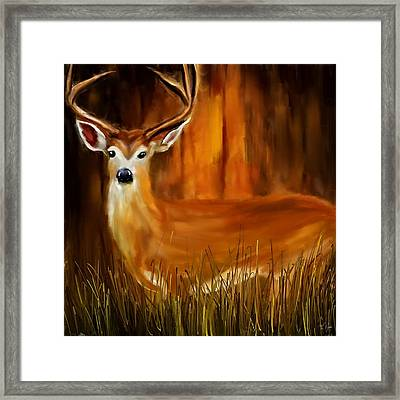 Vigilant Framed Print by Lourry Legarde