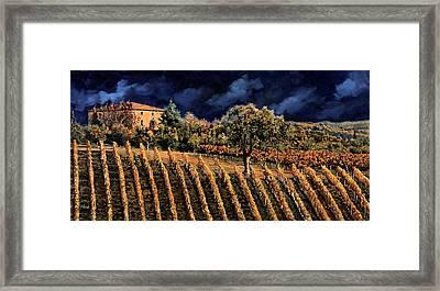 Vigne Orizzontali Framed Print by Guido Borelli