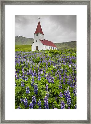 Before The Storm Framed Print by Ning Mosberger-Tang