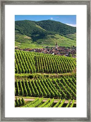 Village Of Ammerschwihr Surrounded Framed Print by Brian Jannsen