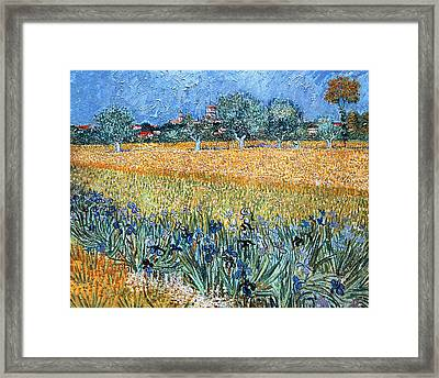Field With Flowers Near Arles Framed Print by Vincent van Gogh