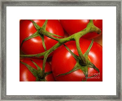 Vine Ripe Framed Print by Peggy Hughes