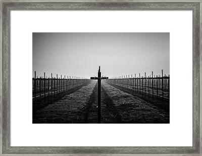 Vineyard Cross Framed Print by Randy Bayne