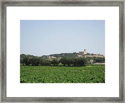 Vineyard In Provence Framed Print by Pema Hou