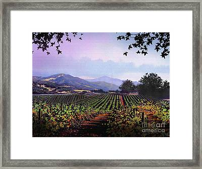 Vineyard Napa Sonoma Framed Print by Robert Foster