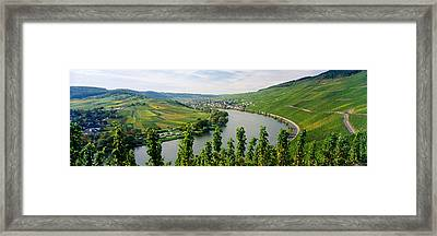 Vineyards Along A River, Moselle River Framed Print by Panoramic Images