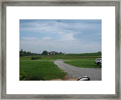Vineyards In Va - 121224 Framed Print by DC Photographer