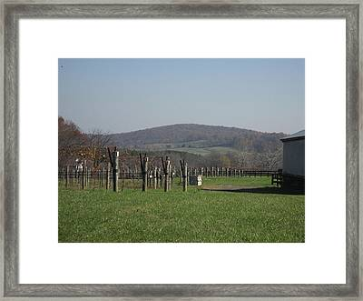Vineyards In Va - 121229 Framed Print by DC Photographer