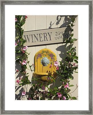 Vineyards In Va - 121242 Framed Print by DC Photographer