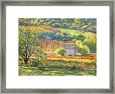 Vineyards Of Provence Framed Print by David Lloyd Glover