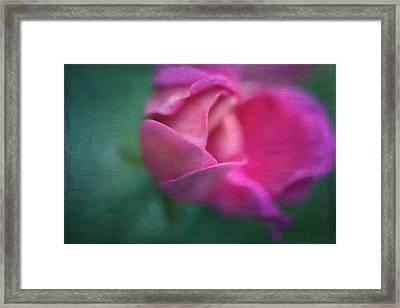 Vining Geranium Bud, Digitally Altered Framed Print by Rona Schwarz