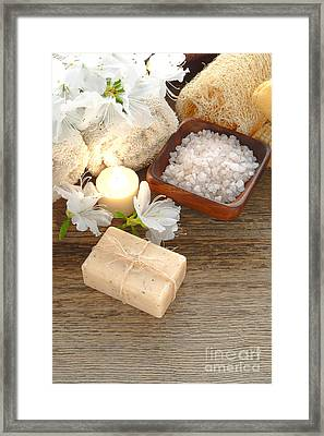 Vintage Aromatherapy Framed Print by Olivier Le Queinec