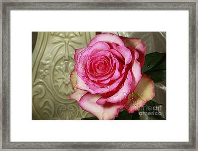 Vintage Beauty Rose Framed Print by Inspired Nature Photography Fine Art Photography