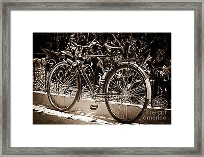Vintage Bike Framed Print by Carlos Alkmin