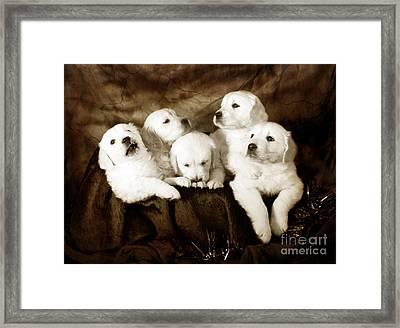 Vintage Festive Puppies Framed Print by Angel  Tarantella