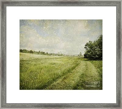 Vintage Landscape Framed Print by Jelena Jovanovic