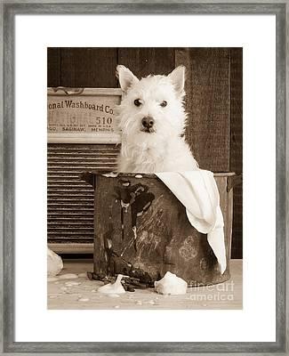 Vintage Laundry Framed Print by Edward Fielding