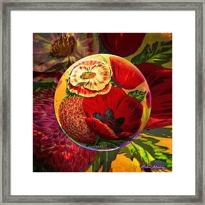 Vintage Poppy Sphere Framed Print by Robin Moline