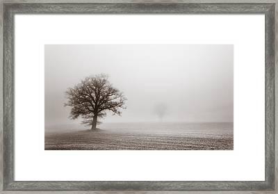 Vintage Treescape Framed Print by Chris Fletcher