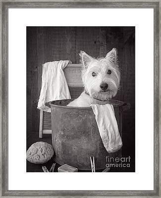 Vintage Wash Day Framed Print by Edward Fielding
