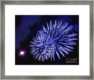 Violet Display Framed Print by Katherine Forrester