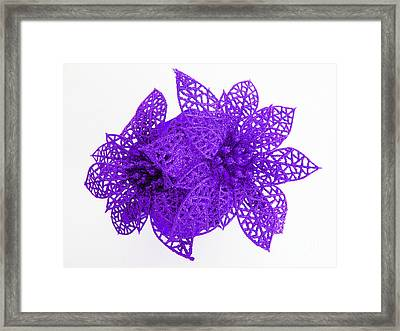 Violet Holiday Flowers From Heaven Framed Print by Tina M Wenger