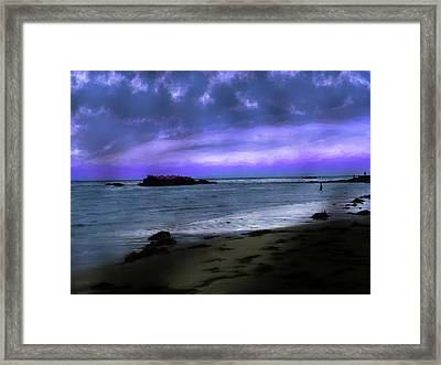 Violet Sunset Framed Print by Cary Shapiro