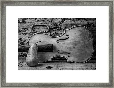 Violin With Pear Framed Print by Garry Gay