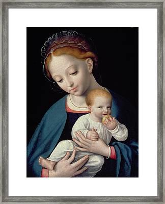 Virgin And Child Framed Print by Cornelis van Cleve