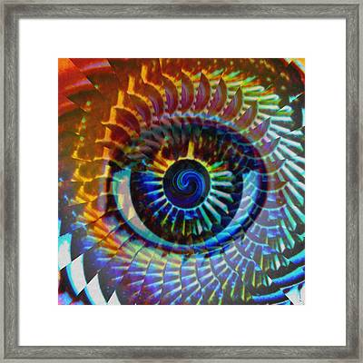 Visionary Framed Print by Gwyn Newcombe