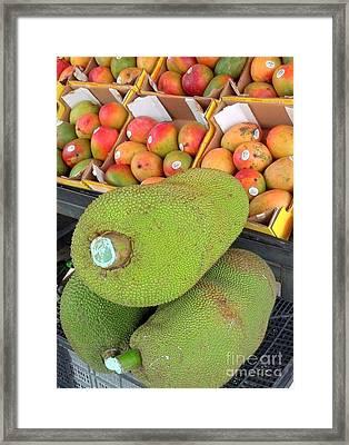 Visit To The Market Framed Print by Rachel Munoz Striggow