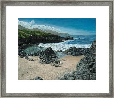 Visitor At Kaena Point Framed Print by Michael Allen Wolfe