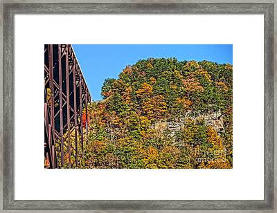 Visitors Center Precipice Framed Print by Timothy Connard