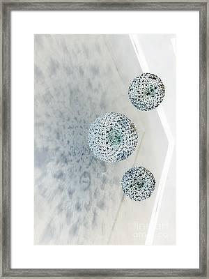 Visitors Framed Print by Marcia Lee Jones