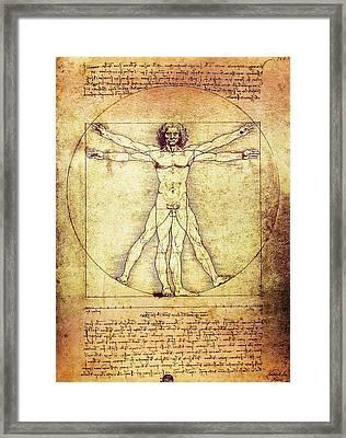 Vitruvian Man  1490 Framed Print by Daniel Hagerman