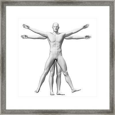 Vitruvian Man Anatomy Framed Print by Sebastian Kaulitzki