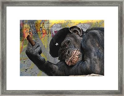 Viva La Evolucion Framed Print by Joachim G Pinkawa