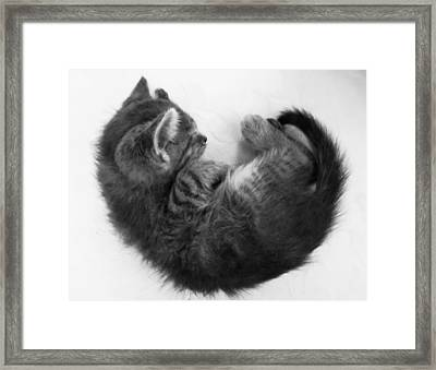 Vulnerable Framed Print by Marianna Mills