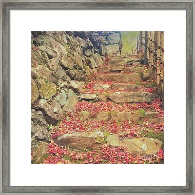 Wabi-sabi Rubble Masonry Bamboo Fence Fallen Leaves Framed Print by Beverly Claire Kaiya