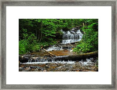 Wagner Falls In Munising Michigan Usa Framed Print by Terri Gostola