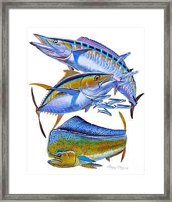 Wahoo Tuna Dolphin Framed Print by Carey Chen