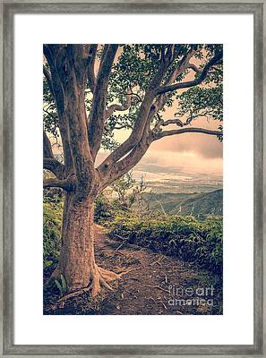 Waihee Ridge Trail Maui Hawaii Framed Print by Edward Fielding