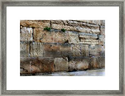 Wailing Wall In Israel Framed Print by Doc Braham