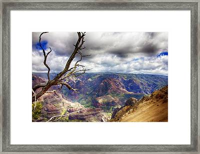 Waimea Canyon V4 Framed Print by Douglas Barnard