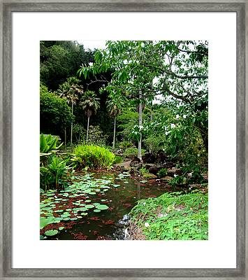 Waimea Valley In The North Shore Of Oahu Hawaii Framed Print by Jim Fitzpatrick