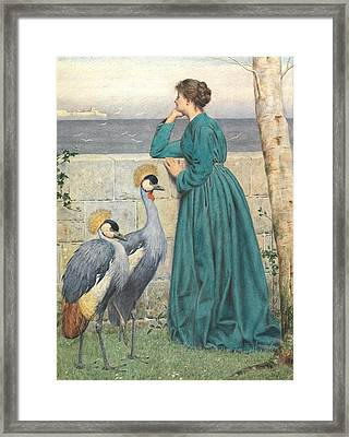 Waiting And Watching Framed Print by Henry Stacey Marks