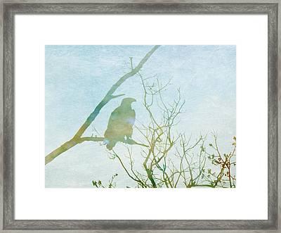 Waiting Eagle Framed Print by Georgia Fowler
